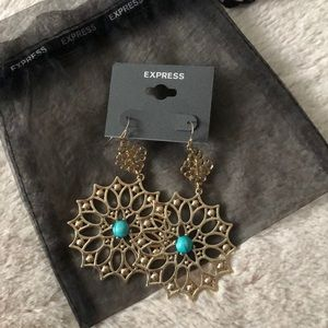 Express Earrings